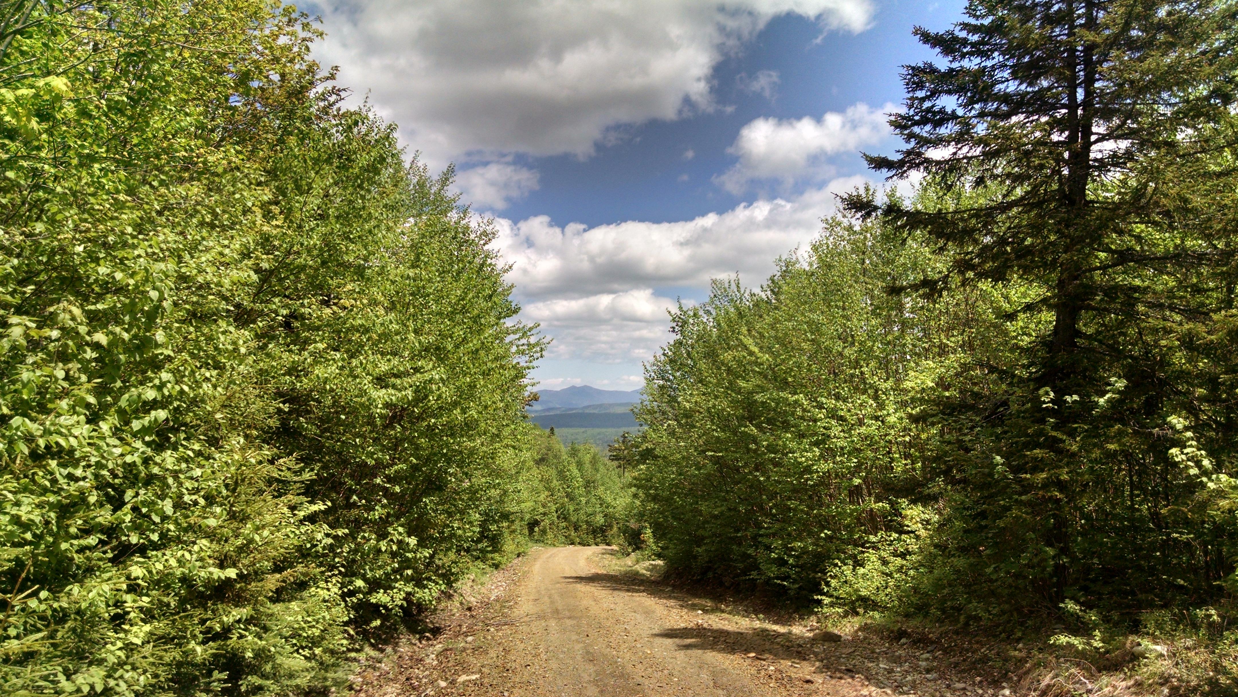 View of the Bigelow Range.