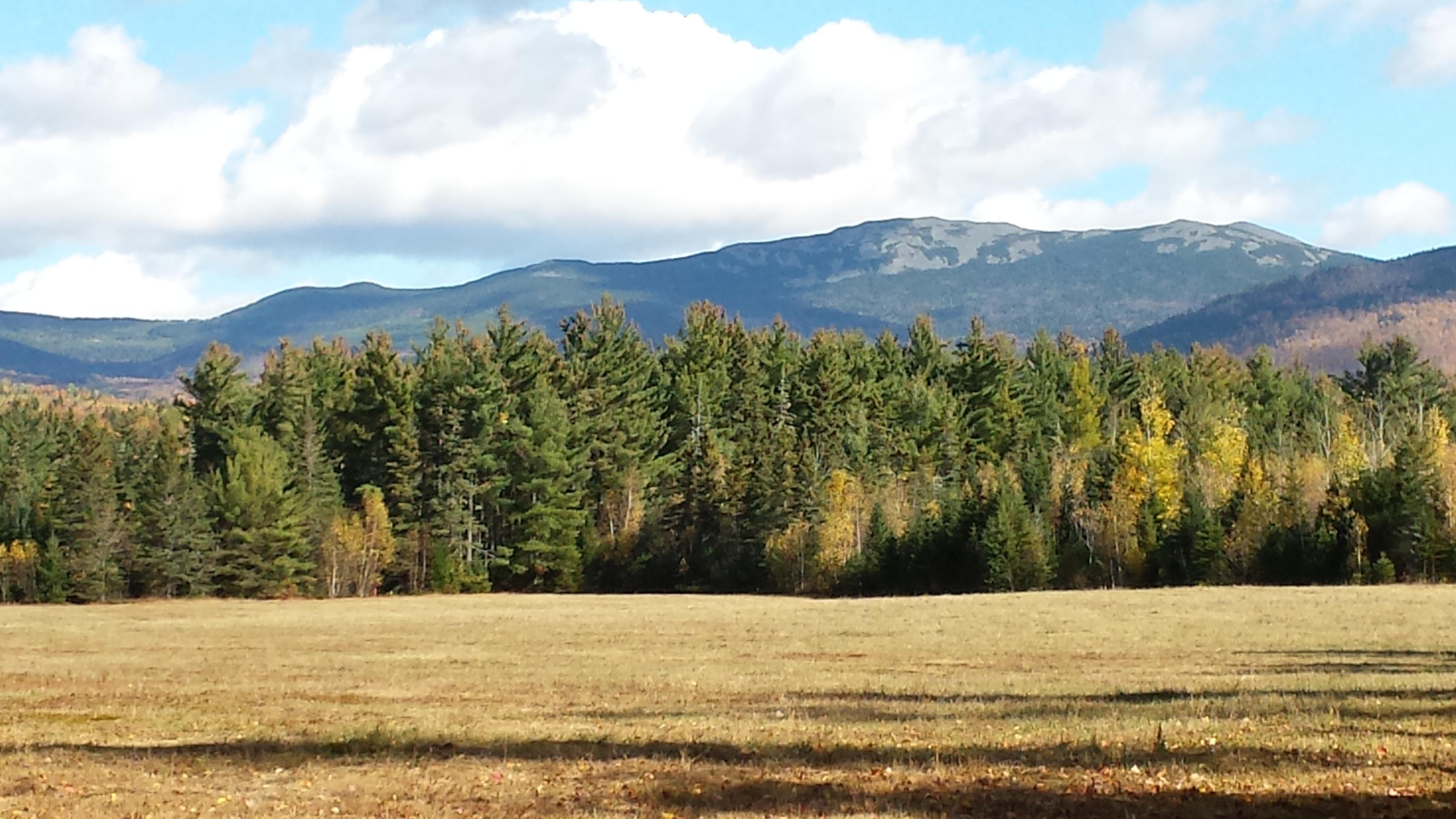 Mount Abraham from the Perham Stream Birding Trail.
